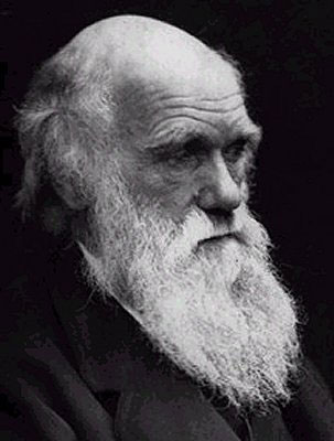 portrait of Darwin | 6 Awkward Awards You Wouldn't Want to Win
